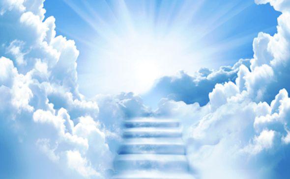 Bildergebnis für inmortalidad