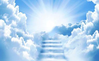 los-seres-humanos-nacemos-con-la-idea-de-la-inmortalidad